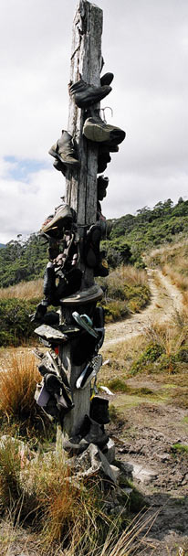 Heaphy Track Boot Pole
